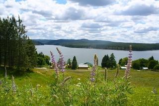 Land Listing - Nine Mile Falls, WA - Thumb