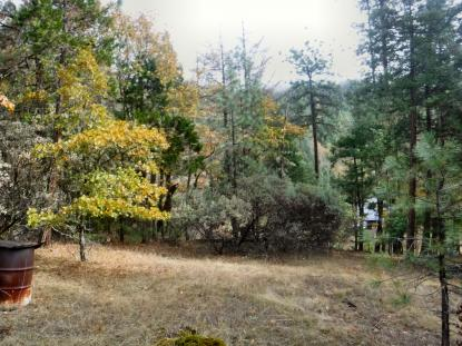 Land Listing - Prospect, OR - Thumb