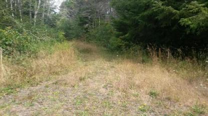 Land Listing - , OR - Thumb