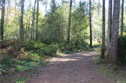 Land Listing - Hoodsport, WA - Thumb