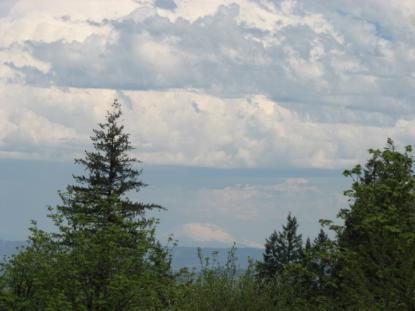 Land Listing - Newberg, OR - Thumb
