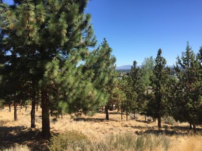 Land Listing - Bend, OR - Thumb